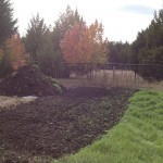 new compost pile 2